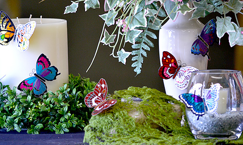 decorative butterfly accents